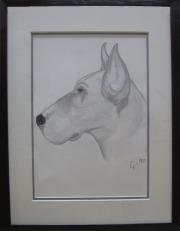 Gunilla Svärd Hund